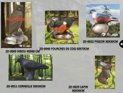 Blasons Animaliers 2D/GROUPE4