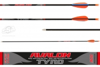 FLECHES AVALON TYRO PAR 100